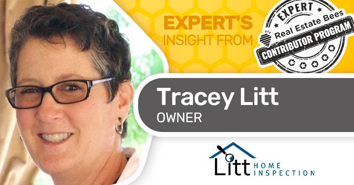 Tracey Litt Property Inspector